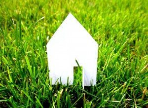 house cutout on grass